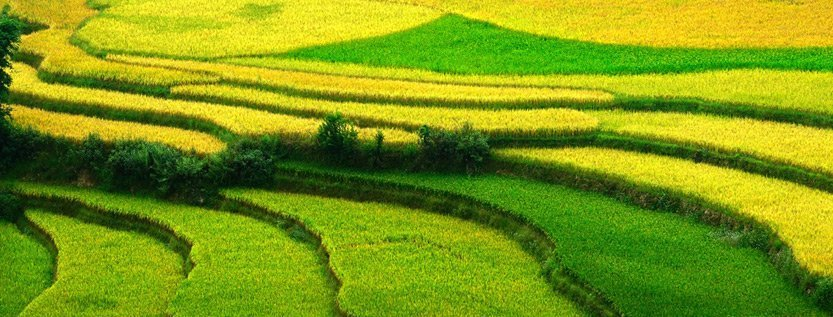 Hanoi- Hagiang 5 jours