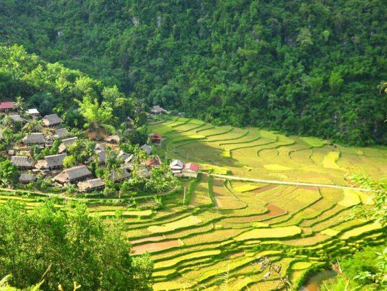 Randonnée à Puluong 3 jours