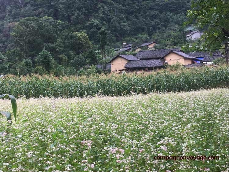 Village-a-Dong-Van