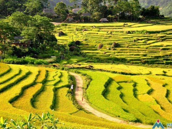 le trajet de la randonnée à Pu Luong