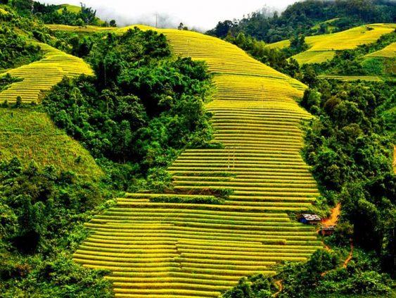 magnifique-paysage à Sapa