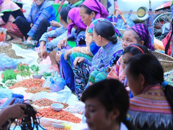 marché coloré alentours Sapa