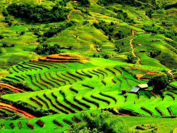 Découvrir Sapa en bus pour 2 jours, rizière en terrasse, ethnies colorés, loger chez habitant
