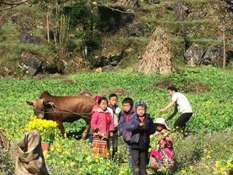 Ha Giang 5 jours- Ethnies colorés- Paysage pittoresque- loger chez habitant