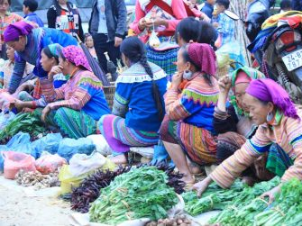 Les-femmes-vendent-les-légumes